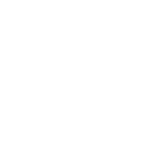 EnterpriseIreland300
