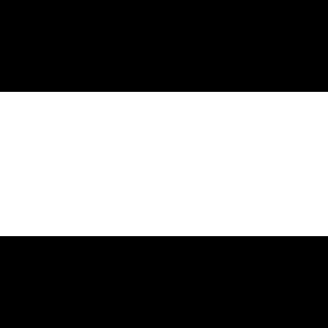 Schwars & Vogel